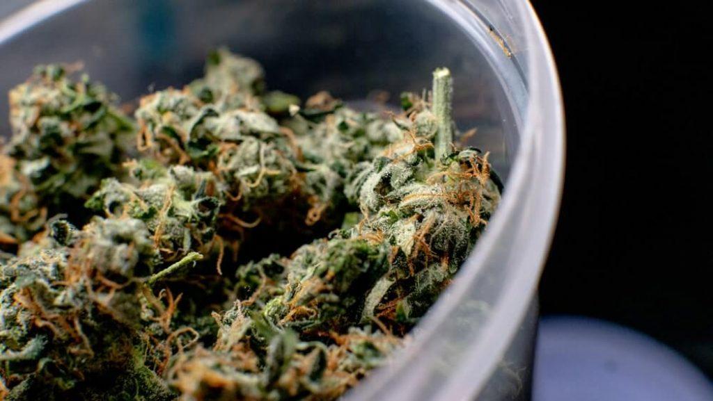 Recreational marijuana strain-min (1)