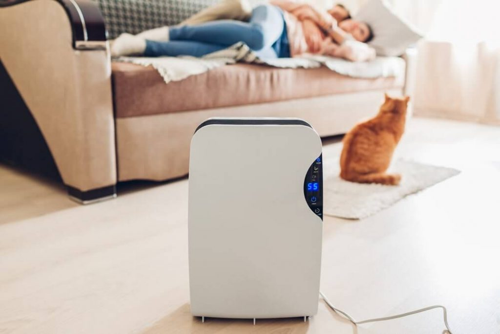 Dehumidifier with touch panel, humidity indicator, uv lamp, air ionizer, water container works at home while people relaxing with cat.