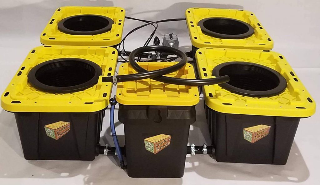Deep Water Culture Hydroponic System