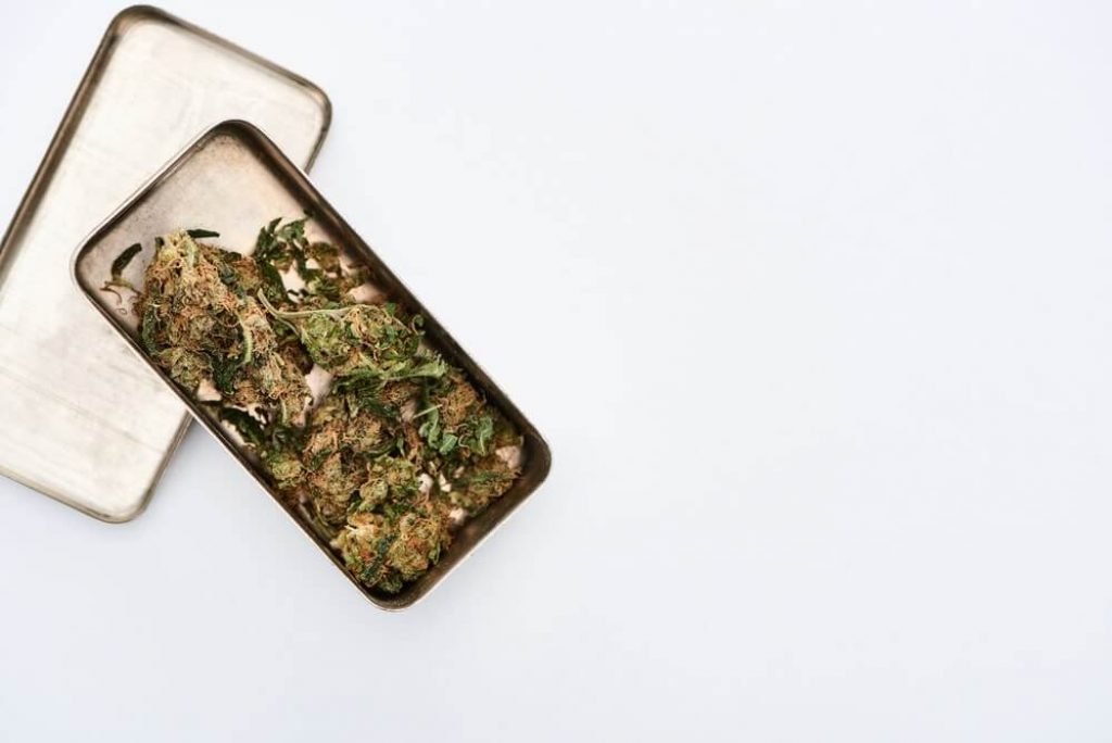 Top view of Marijuana Buds in metal case on white background