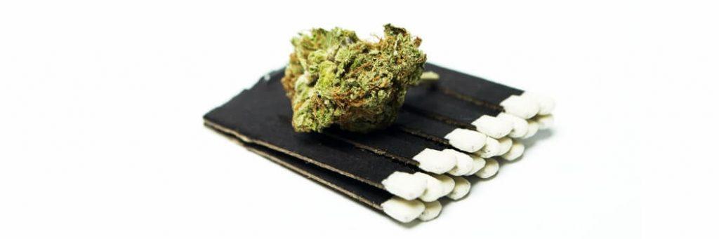 Marijuana drugs still life isolated on white background