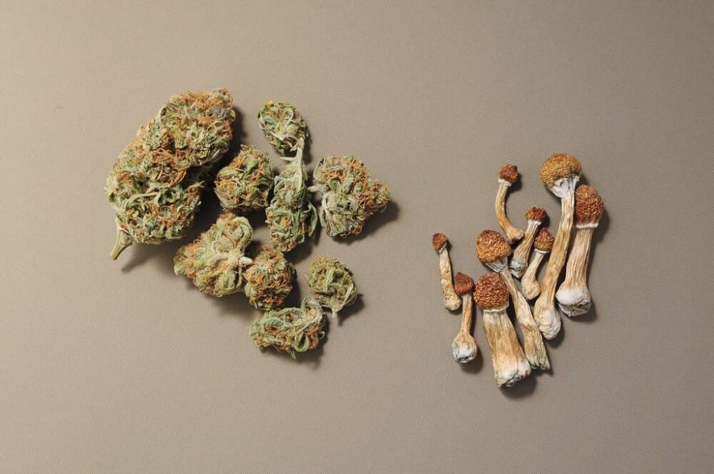 Shrooms and Marijuana