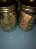 This Is Why Your Weed Smells Like Hay..